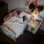 Via de video beelden is duidelijk te zien dat Joris heerlijk slaapt.